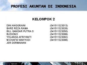 PROFESI AKUNTAN DI INDONESIA KELOMPOK 2 DINI ANGGRAINI