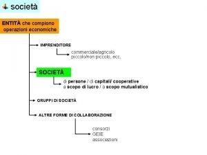 societ ENTIT che compiono operazioni economiche IMPRENDITORE commercialeagricolo