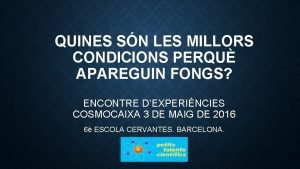 QUINES SN LES MILLORS CONDICIONS PERQU APAREGUIN FONGS