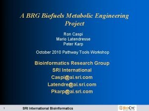 A BRG Biofuels Metabolic Engineering Project Ron Caspi