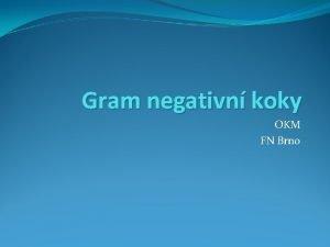 Gram negativn koky OKM FN Brno Rod Neisseria