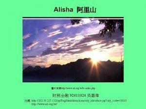 Alisha http www ali org twtcindex php 92411024