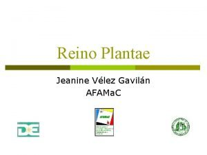 Reino Plantae Jeanine Vlez Gaviln AFAMa C Propsitos