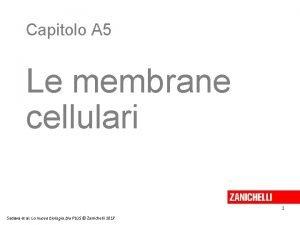 Capitolo A 5 Le membrane cellulari 1 Sadava
