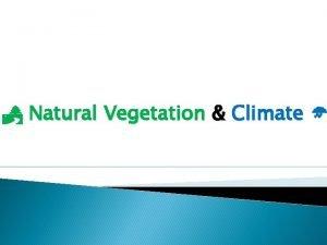 Natural Vegetation Climate Natural What is Natural Vegetation
