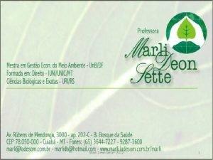 Marli Deon Sette 2012 1 Tutela TUTELA Processual