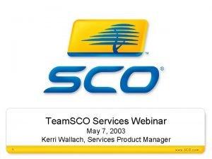 Team SCO Services Webinar May 7 2003 Kerri