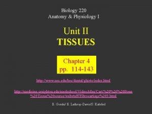 Biology 220 Anatomy Physiology I Unit II TISSUES