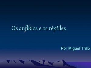 Os anfibios e os rptiles Por Miguel Trillo