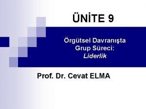 NTE 9 rgtsel Davranta Grup Sreci Liderlik Prof