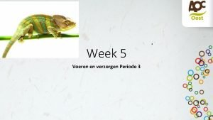 Week 5 Voeren en verzorgen Periode 3 Wat