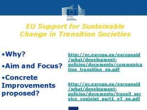 EU Support for Sustainable Change in Transition Societies