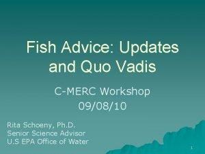 Fish Advice Updates and Quo Vadis CMERC Workshop