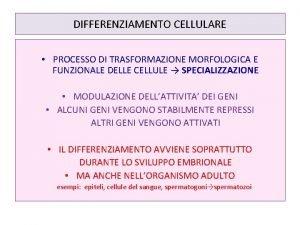 DIFFERENZIAMENTO CELLULARE PROCESSO DI TRASFORMAZIONE MORFOLOGICA E FUNZIONALE