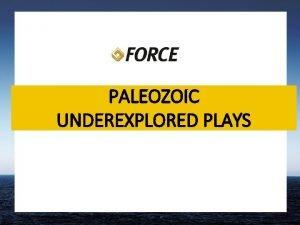 PALEOZOIC UNDEREXPLORED PLAYS Paleozoic plays In total 239
