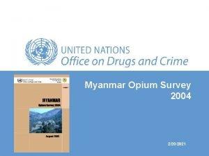 Myanmar Opium Survey 2004 2202021 Opium poppy cultivation