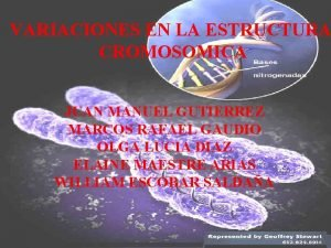 MUTACIONES Biologa 2 Bachillerato VARIACIONES EN LA ESTRUCTURA