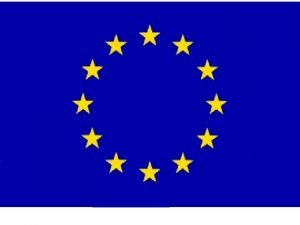 European federation nurses associations European specialists nursing organisations
