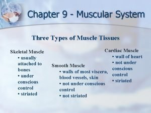 Chapter 9 Muscular System Three Types of Muscle