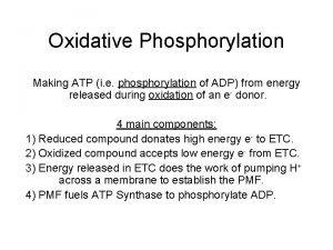 Oxidative Phosphorylation Making ATP i e phosphorylation of