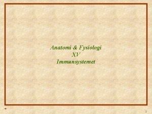 Anatomi Fysiologi XV Immunsystemet 1 Anatomi Fysiologi Lektion