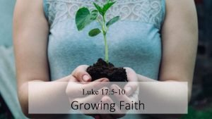 Luke 17 5 10 Growing Faith Growing Faith