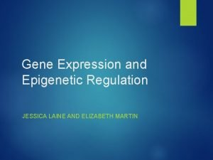 Gene Expression and Epigenetic Regulation JESSICA LAINE AND