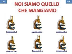 FINE NOI SIAMO QUELLO CHE MANGIAMO Esperimento 1