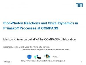 PionPhoton Reactions and Chiral Dynamics in Primakoff Processes