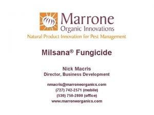 Milsana Fungicide Nick Macris Director Business Development nmacrismarroneorganics