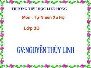 TRNG TIU HC LIN HNG Mn T Nhin