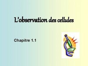 Lobservation des cellules Chapitre 1 1 Chapitre 1