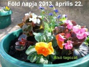 Fld napja 2013 prilis 22 Als tagozat Virgot