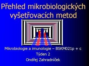 Pehled mikrobiologickch vyetovacch metod Mikrobiologie a imunologie BSKM