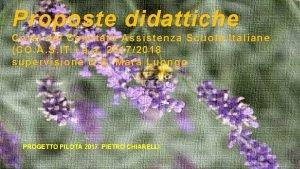 Proposte didattiche Corsi del Comitato Assistenza Scuole Italiane