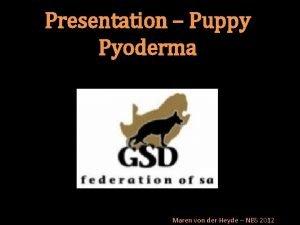 Presentation Puppy Pyoderma Maren von der Heyde NBS