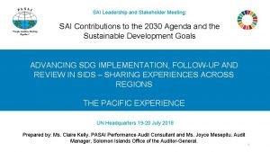 SAI Leadership and Stakeholder Meeting SAI Contributions to