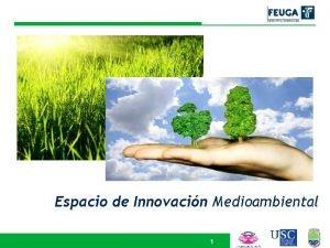 Espacio de Innovacin Medioambiental 1 NDICE ESPACIO DE
