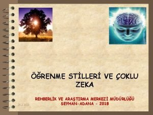 RENME STLLER VE OKLU ZEKA 20 2 2021