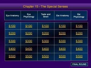 Chapter 15 The Special Senses Eye Anatomy Eye