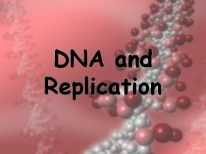 DNA and Replication 1 DNA Structure 2 DNA