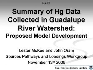 Item 5 Summary of Hg Data Collected in
