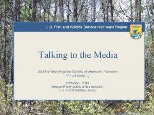 U S Fish and Wildlife Service Northeast Region