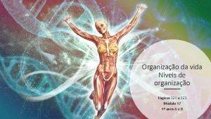 Organizao da vida Nveis de organizao Apostila 9