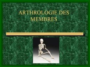 ARTHROLOGIE DES MEMBRES POSTURE LOCOMOTION SYSTEME NERVEUX DES