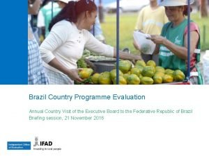 Brazil Country Programme Evaluation Annual Country Visit of