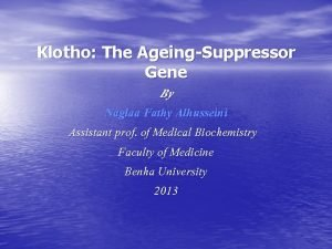 Klotho The AgeingSuppressor Gene By Naglaa Fathy Alhusseini