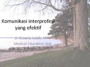 Komunikasi interprofesi yang efektif dr Rosaria Indah M