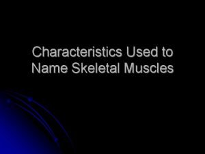 Characteristics Used to Name Skeletal Muscles Naming Skeletal