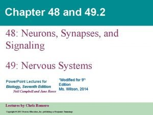 Chapter 48 and 49 2 48 Neurons Synapses